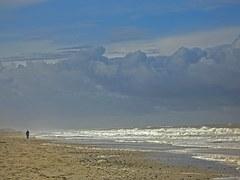 north-sea-peekaboo in danimarca